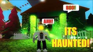 NEW HAUNTED HOUSE UPDATE! James The Noob King's castle (Roblox)