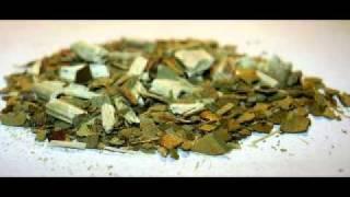 Yerba mate tea, the new weight loss alternative
