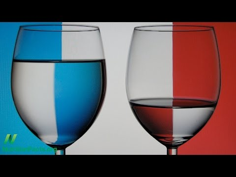 What Explains the French Paradox?