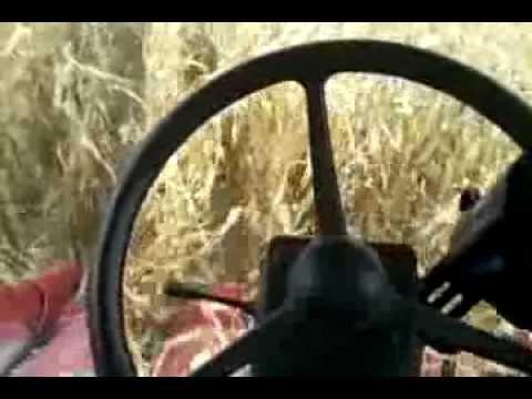 Truesight & EZ Steer auto steering Case IH 2388 combine