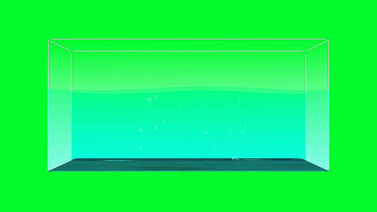 yxd_Water Tank Aquarium - Green Screen Animation - YouTube