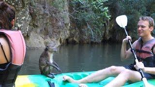 Awesome Kayaking in Krabi, Thailand
