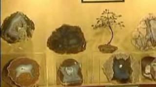 Fossil Cartel