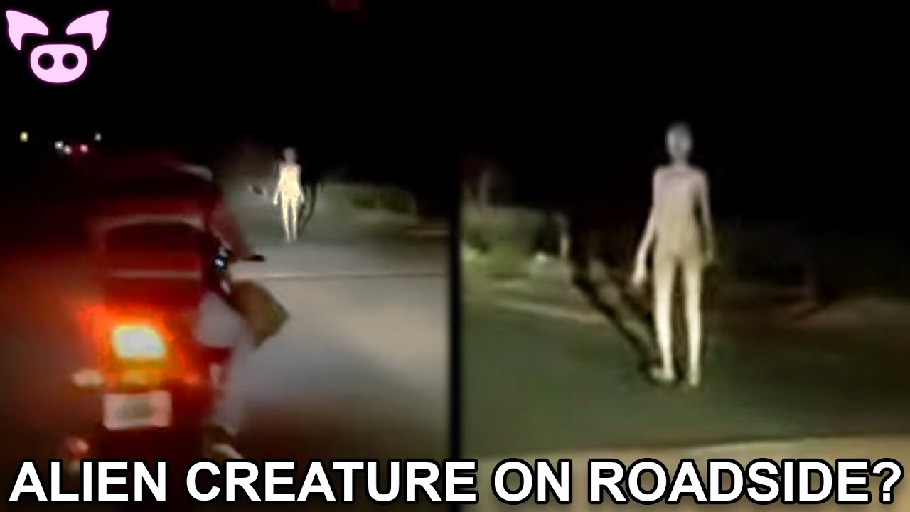 These Scary Videos Are Causing Panic on the Internet