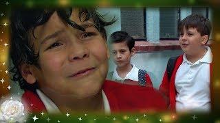 Las 7 alertas del bullying   La Rosa de Guadalupe