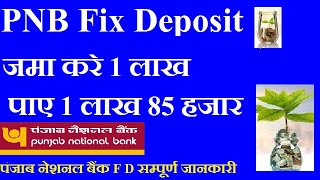 PUNJAB NATIONAL BANK FIX DEPOSIT    PNB FD INTEREST RATE 2019 HINDI
