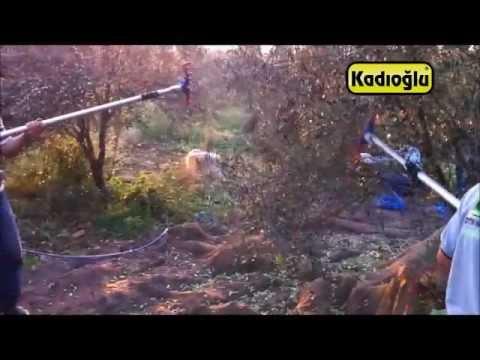 Kompresörlü Zeytin Hasat - Toplama Makinası - Kadıoğlu Octo