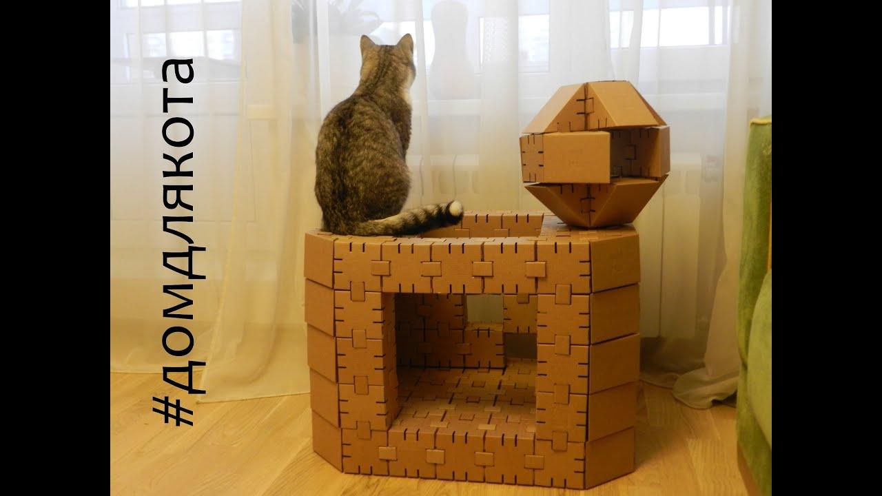 VIP туалет для кошки женскими руками - YouTube