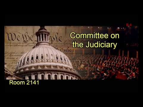 Crime Subcommittee Hearing on Violence in America