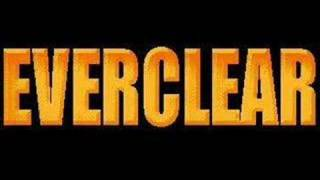 Watch Everclear The Swing video