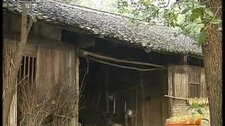 美丽中国乡村行 [生活567]寻亲30年(20110606)