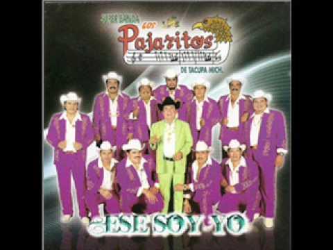 discografia de los pajaritos de tacupa michoacan