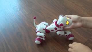 Zoomer собака робот. Розовая собака