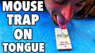 THE MOUSE TRAP OLYMPICS!!!