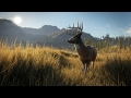 The Hunter : Call Of The Wild - Official Gameplay Trailer 2017