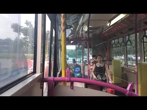 [SBS Transit] Scania K230UB (Euro IV, ZF Ecomat 6HP504C) -  Service 50