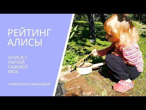 РЕЙТИНГ АЛИСЫ. Алиса и папа сажают мох