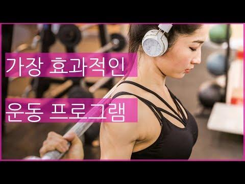 효과적인 운동 프로그램 짜는 법 (초보자/중급자)