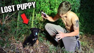 Saving Puppy ABANDONED in the woods...