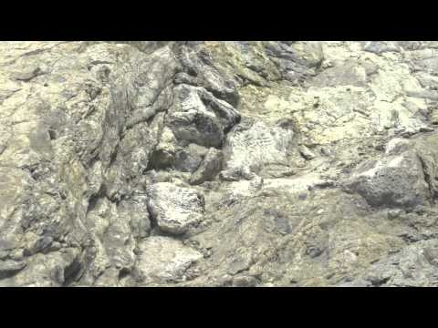 Devonian Fossil Gorge Walking Tour narrated by Jeffrey Miller