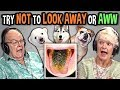 Elders React To Try Not To Look Away Or Aww Mega Challenge