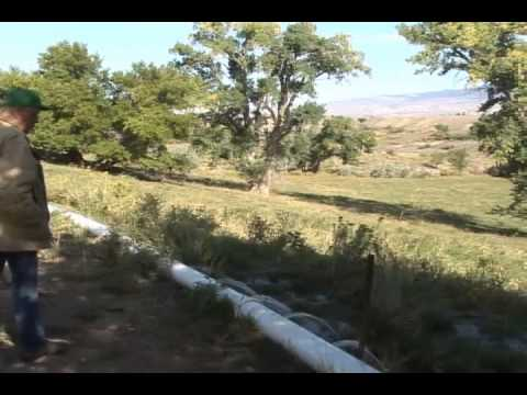 IWM-Flood Irrigation Maintenance