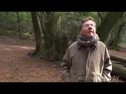 Being in Nature with Eckhart Tolle, author of THE POWER OF NOW
