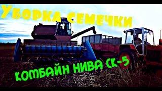 Комбайн НИВА СК-5 уборка семечки