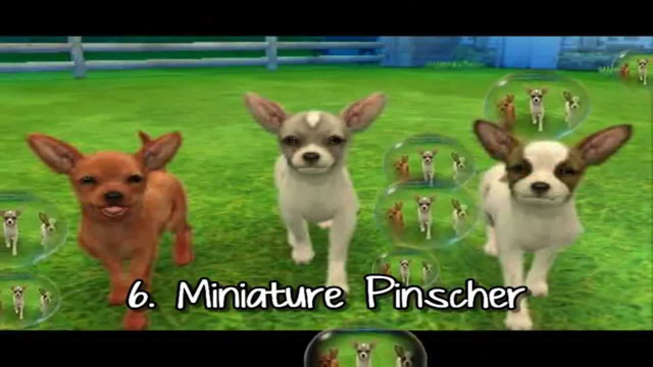Nintendogs+cats 3DS : Top 10 races [HQ] / Top 10 breeds