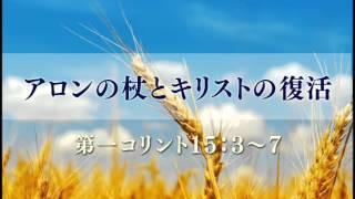 このメッセージは2004年4月に中川健一牧師が語ったメッセージです。 他...