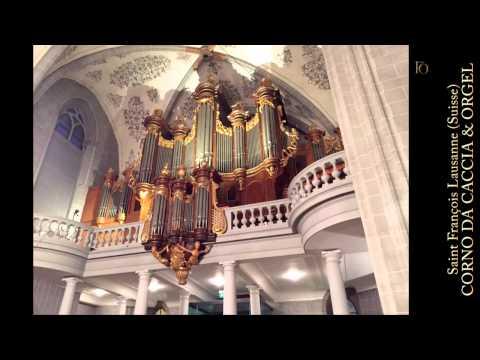 G. Ph. Telemann: Concerto D-Dur for Corno da caccia & Organ