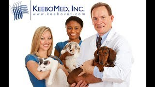Veterinarian Diagnoses Canine Cystitis using Ultrasound Technology