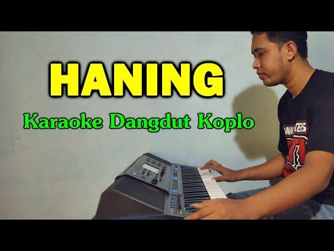 HANING (Lagu Dayak) Karaoke Koplo Tanpa Vokal - CASIO MZX500