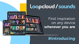 Loopcloud Sounds - Find inspiration on any device wherever you are
