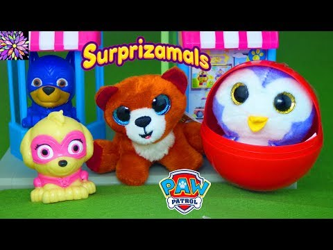 Paw Patrol Learning Video For Kids Baby Pups No Bullying