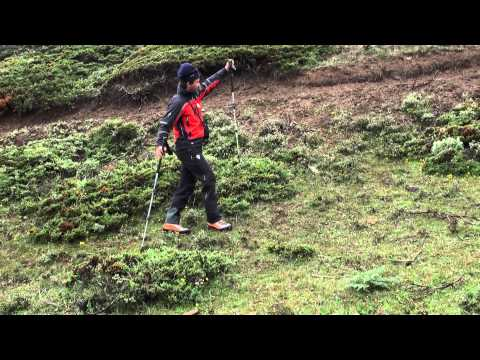 Trekking pole training in BMC2012