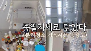 냉장고 분리청소는 처음이야 | 미니멀리스트 냉장고 | …