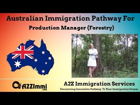 Australia Immigration Pathway for Production Manager (Forestry)*** (ANZSCO Code: 133511)