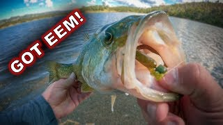 Spring Bank Fishing: What You Need To Know!