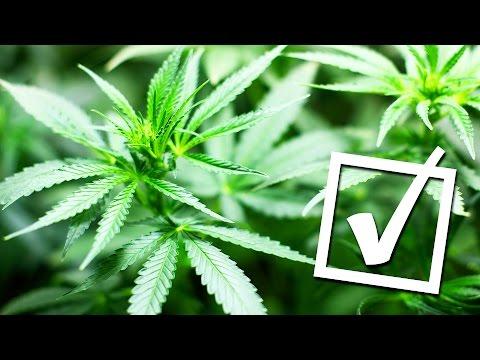 Cannabis legalisiert - für medizinische Zwecke. - Clixoom Science & Fiction