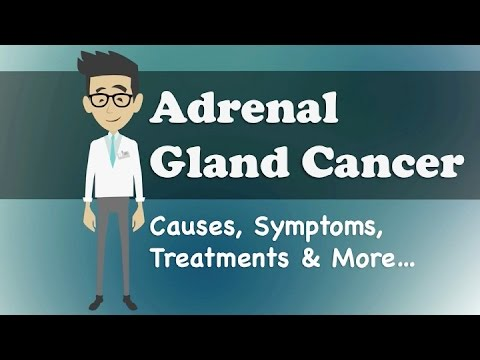 Adrenal Gland Cancer - Causes, Symptoms, Treatments & More…