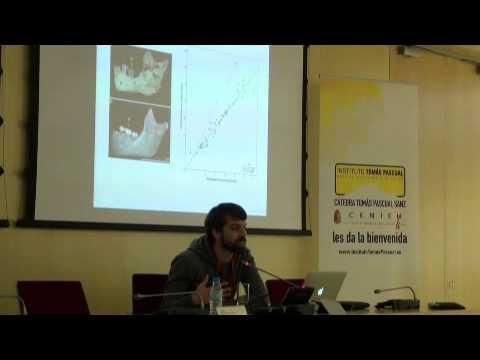 """Brain human evolution: ontogeny and philogeny"""