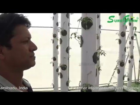 MAKE IN INDIA - MADE IN INDIA Pilot Commercial Aeroponics Vertical Farming Intro Video by Sure Grow