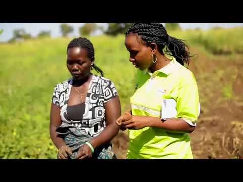 Uganda Nutrition Fellowship Documentary