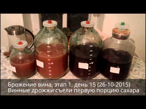 Брожение вина, этап 1 | Домашнее вино своими руками | Эпизод 5