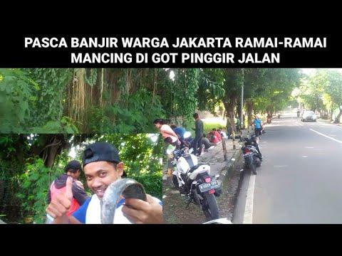 Spot Mancing Cumi Di Jakarta