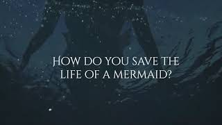 The Case of the Lost Mermaid - Book Trailer (OUT NOW)