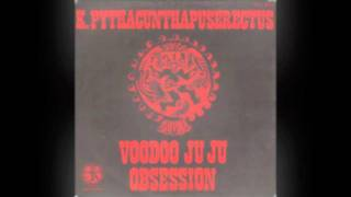 K Pythacunthapuserectus - Voodoo Ju Ju Obsession