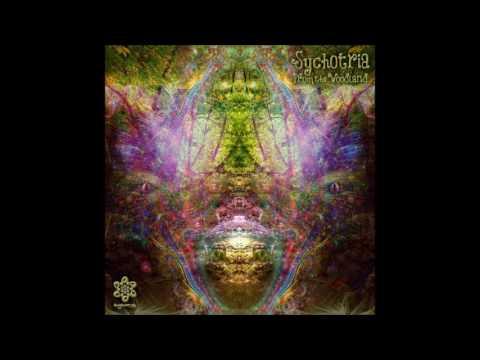 Sychotria - Where's The Soul