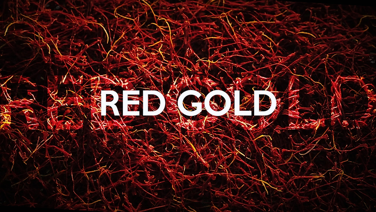 FS7 II competition - RED GOLD